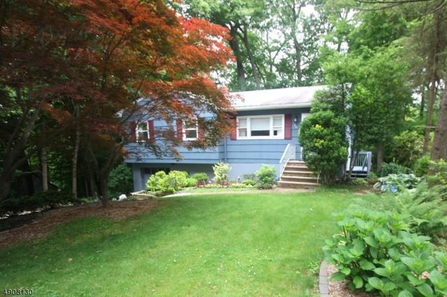 20 Seneca Dr, Ringwood Boro, NJ 07456 (MLS #3566719) :: William Raveis Baer & McIntosh