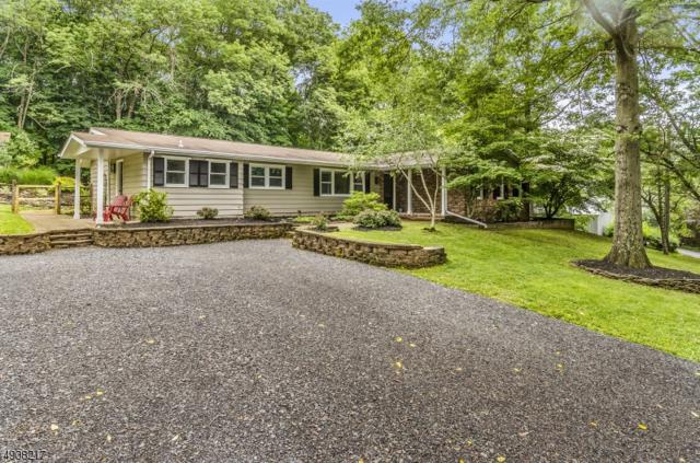 350 Milford Mt-Pleasant Road, Milford Boro, NJ 08848 (MLS #3566780) :: Mary K. Sheeran Team