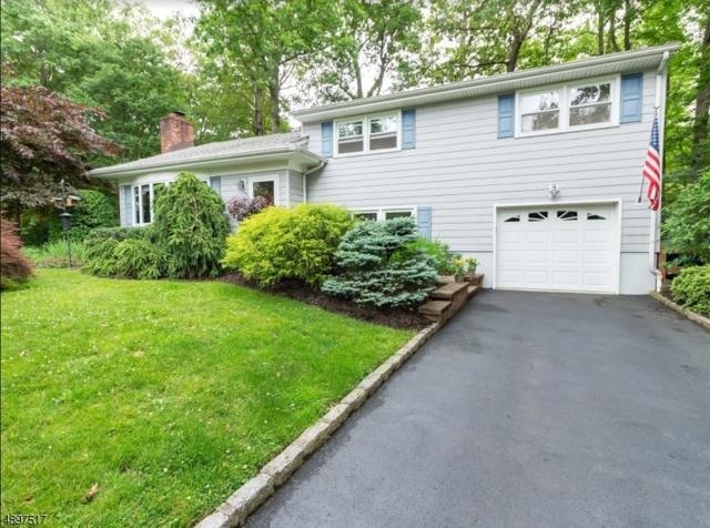 16 Ridge Way, Fanwood Boro, NJ 07023 (#3566870) :: The Force Group, Keller Williams Realty East Monmouth