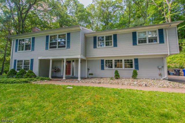 57 Raynor Rd, Morris Twp., NJ 07960 (MLS #3566894) :: SR Real Estate Group