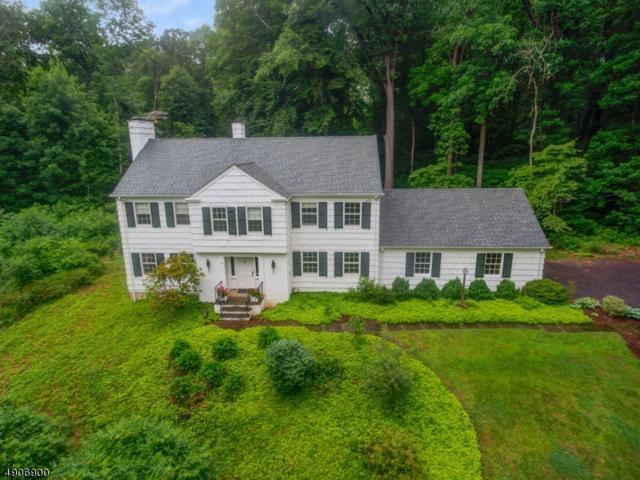 91 Pleasantville Rd, Harding Twp., NJ 07976 (MLS #3566936) :: SR Real Estate Group