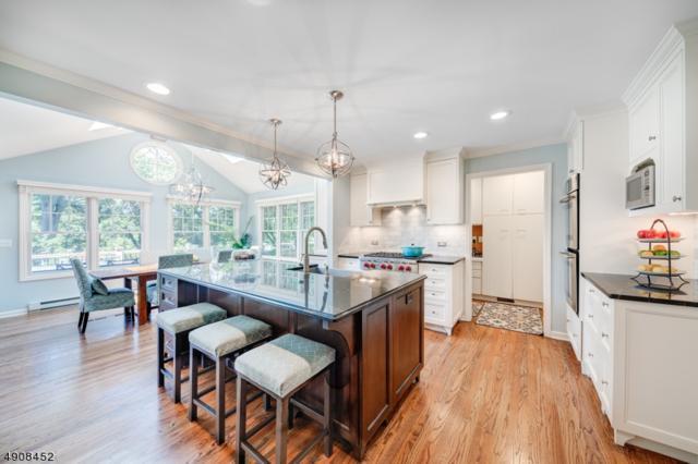 99 Druid Hill Rd, Summit City, NJ 07901 (MLS #3566996) :: SR Real Estate Group