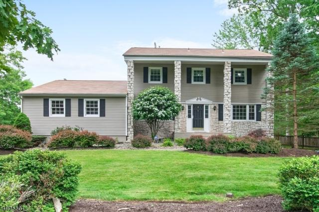 18 Beaver Dam Road, Randolph Twp., NJ 07869 (MLS #3566997) :: SR Real Estate Group