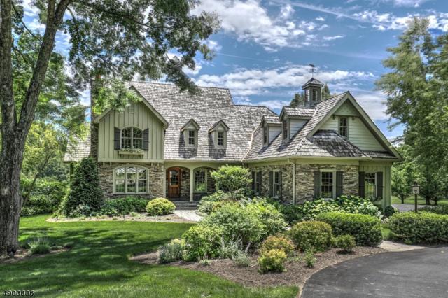 3 Gephardt Farm Rd, Union Twp., NJ 08867 (MLS #3567015) :: Zebaida Group at Keller Williams Realty