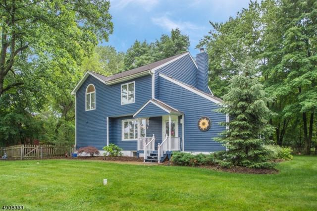 2 Dawson Rd, Randolph Twp., NJ 07869 (MLS #3567134) :: The Douglas Tucker Real Estate Team LLC