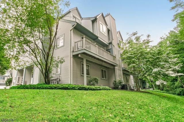 44 Garden Court, Roxbury Twp., NJ 07876 (MLS #3567136) :: William Raveis Baer & McIntosh
