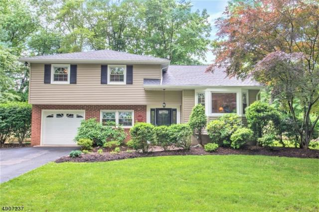 32 Dolly Dr, Parsippany-Troy Hills Twp., NJ 07054 (MLS #3567144) :: SR Real Estate Group