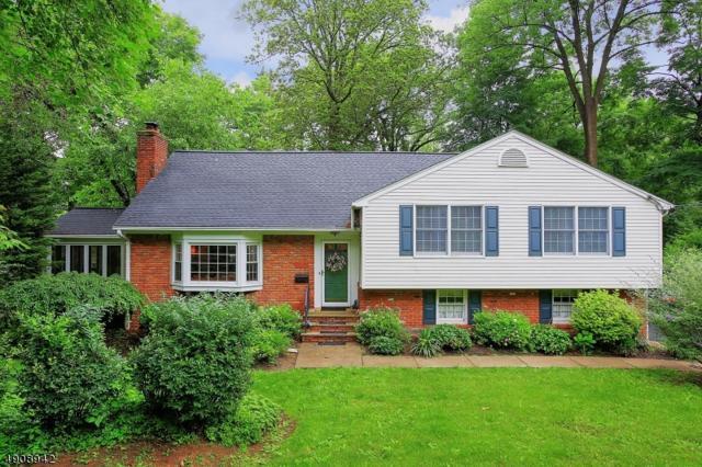 16 Deerfield Rd, New Providence Boro, NJ 07974 (MLS #3567504) :: Coldwell Banker Residential Brokerage