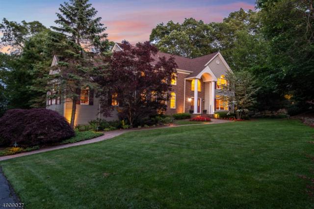 3 Woodside Dr, Montville Twp., NJ 07005 (MLS #3567958) :: SR Real Estate Group