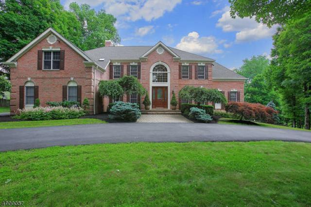 2 Krista Ct, Mendham Twp., NJ 07945 (MLS #3568070) :: William Raveis Baer & McIntosh