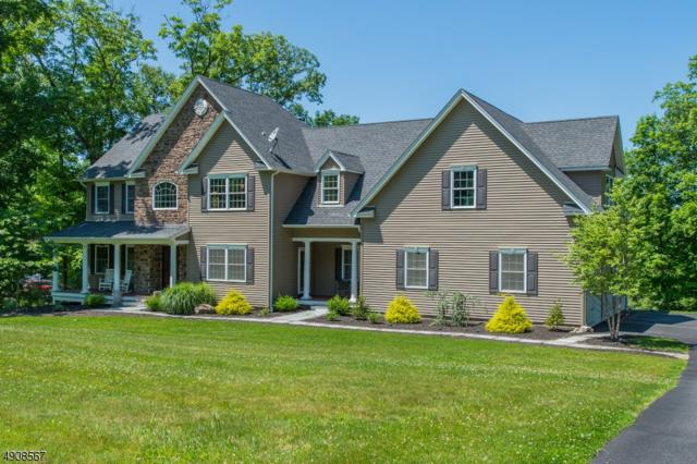 10 Fawn Hollow Dr, Green Twp., NJ 07821 (MLS #3568074) :: Mary K. Sheeran Team