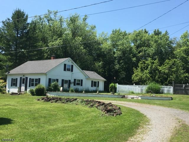 213 County Rd 513, Alexandria Twp., NJ 08825 (MLS #3568117) :: Mary K. Sheeran Team
