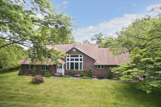 455 Somerville Rd, Bernards Twp., NJ 07920 (MLS #3568124) :: Coldwell Banker Residential Brokerage
