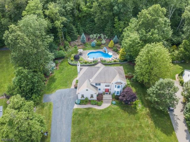 3 Sleepy Hollow Dr, Jefferson Twp., NJ 07438 (MLS #3568152) :: Coldwell Banker Residential Brokerage
