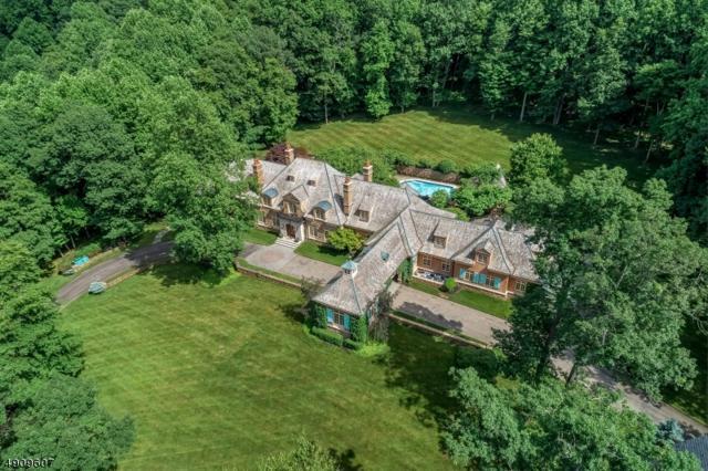 8 Chapel Ln, Mendham Boro, NJ 07945 (MLS #3568167) :: SR Real Estate Group
