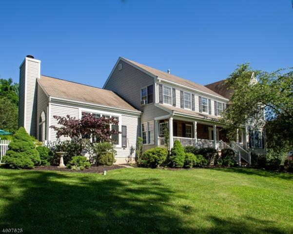 7 Hill Hollow Ct, Clinton Twp., NJ 08809 (MLS #3568254) :: Mary K. Sheeran Team