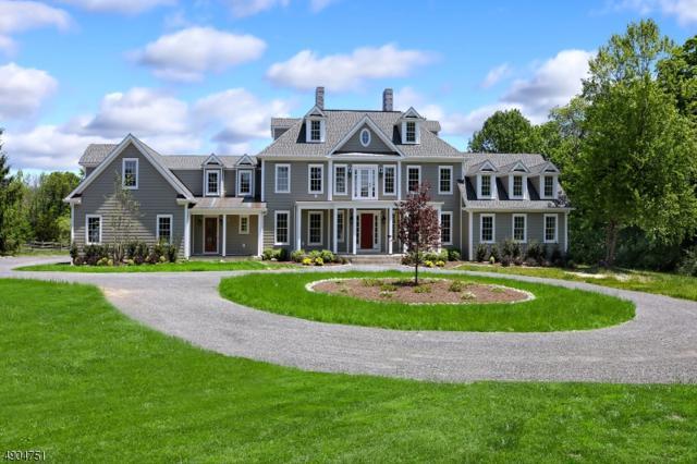 114 Federal Twist Rd, Delaware Twp., NJ 08559 (MLS #3568475) :: Team Francesco/Christie's International Real Estate