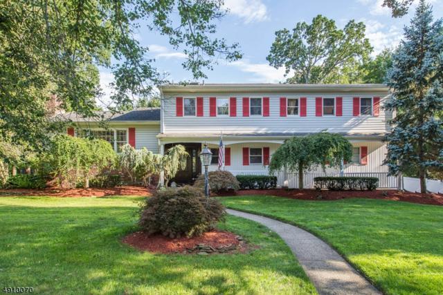 27 Chandler Dr, Wayne Twp., NJ 07470 (MLS #3568520) :: The Dekanski Home Selling Team