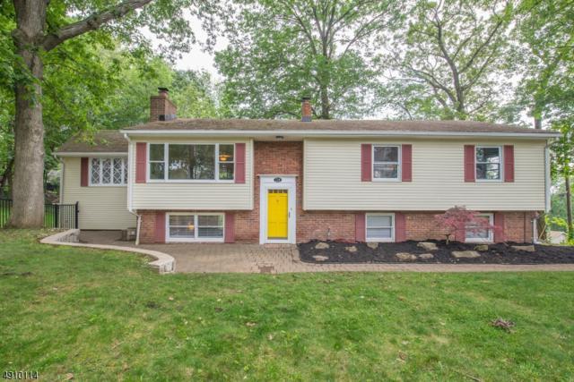 714 Reba Rd, Mount Arlington Boro, NJ 07850 (MLS #3568580) :: The Dekanski Home Selling Team