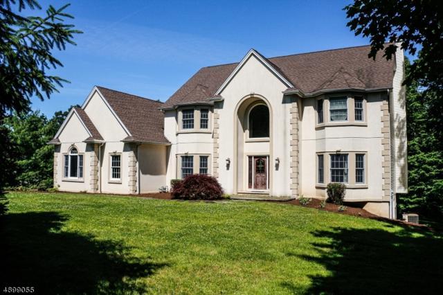 57 Boonton Ave, Kinnelon Boro, NJ 07405 (MLS #3568603) :: The Dekanski Home Selling Team