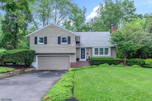 1149 Tice Pl, Westfield Town, NJ 07090 (MLS #3568625) :: Coldwell Banker Residential Brokerage