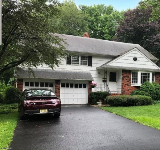 48 Manitou Cir, Westfield Town, NJ 07090 (MLS #3568690) :: Coldwell Banker Residential Brokerage