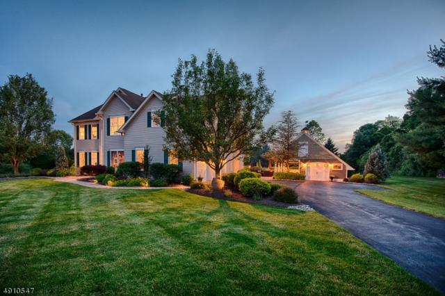 7 Kalan Farm Rd, Bethlehem Twp., NJ 08827 (MLS #3569053) :: SR Real Estate Group