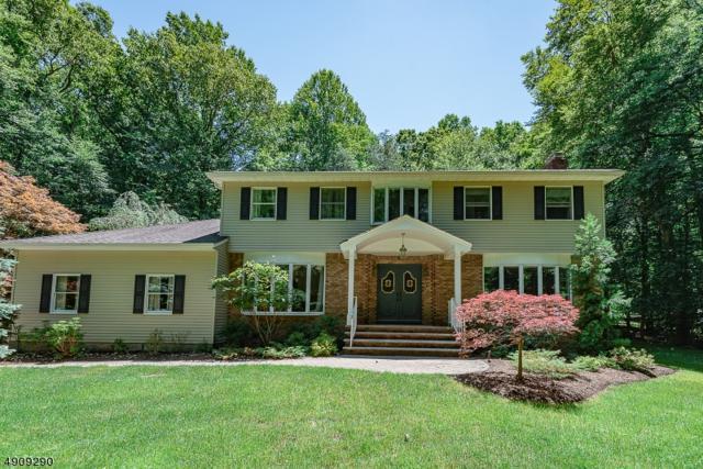 34 N Church Rd, Saddle River Boro, NJ 07458 (MLS #3569143) :: SR Real Estate Group
