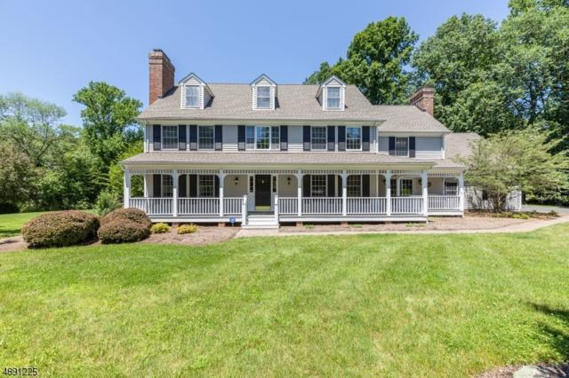 18 Forest View Dr, Chester Twp., NJ 07930 (MLS #3569318) :: REMAX Platinum