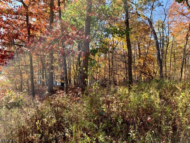 34 White Rock Blvd, Jefferson Twp., NJ 07438 (#3569432) :: NJJoe Group at Keller Williams Park Views Realty