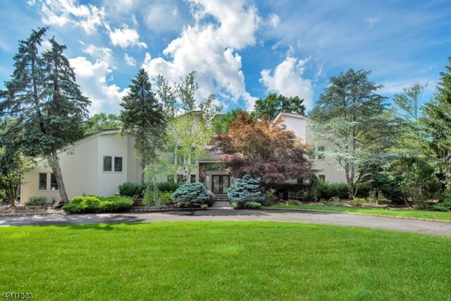17 Canoe Brook Dr, Livingston Twp., NJ 07039 (MLS #3569652) :: Pina Nazario