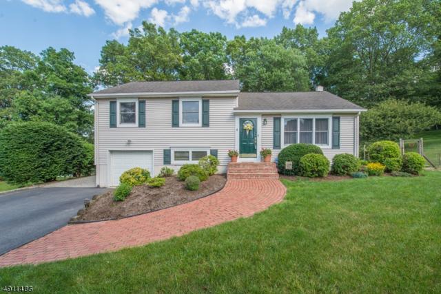 44 Countrywood Drive, Hanover Twp., NJ 07950 (MLS #3569896) :: Mary K. Sheeran Team