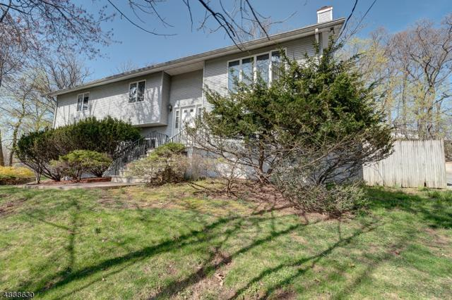 613 Mt Pleasant Ave, West Orange Twp., NJ 07052 (MLS #3570145) :: Pina Nazario