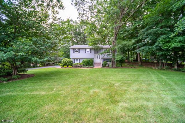 86 Mill Rd, Roxbury Twp., NJ 07885 (MLS #3570591) :: William Raveis Baer & McIntosh