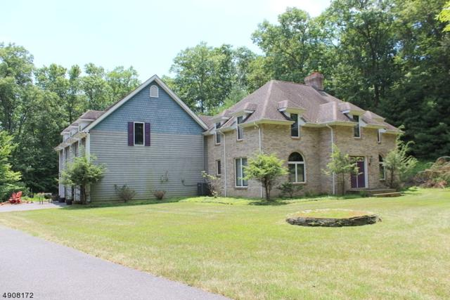 115 Mohican Rd, Blairstown Twp., NJ 07825 (#3570788) :: Daunno Realty Services, LLC