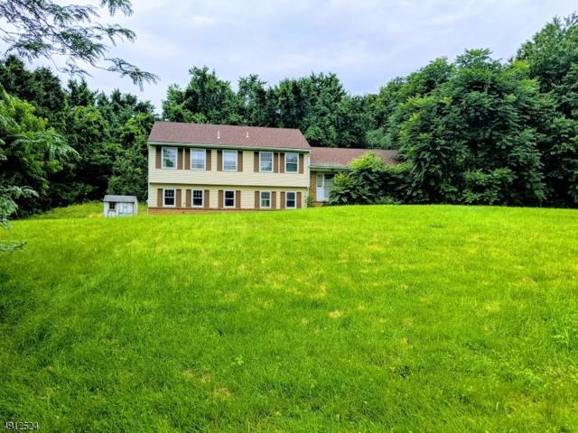 55 Country Club Ln, Harmony Twp., NJ 08865 (MLS #3570840) :: Weichert Realtors