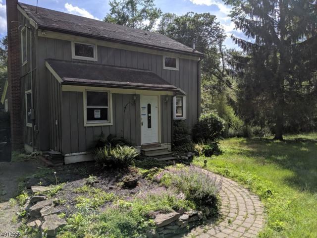 36 Sand Pond Rd, Hardwick Twp., NJ 07825 (#3570864) :: Daunno Realty Services, LLC