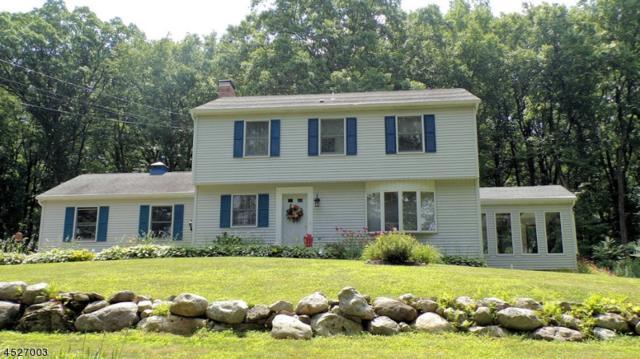 17 Kishpaugh Rd, Blairstown Twp., NJ 07825 (#3571071) :: Daunno Realty Services, LLC