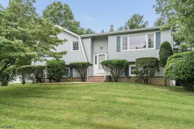 154 Eyland Ave, Roxbury Twp., NJ 07876 (MLS #3571107) :: William Raveis Baer & McIntosh