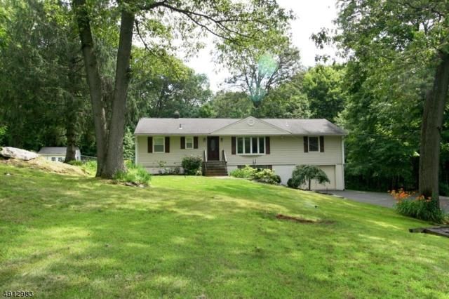 96 Minnisink Rd, Jefferson Twp., NJ 07849 (MLS #3571249) :: Weichert Realtors