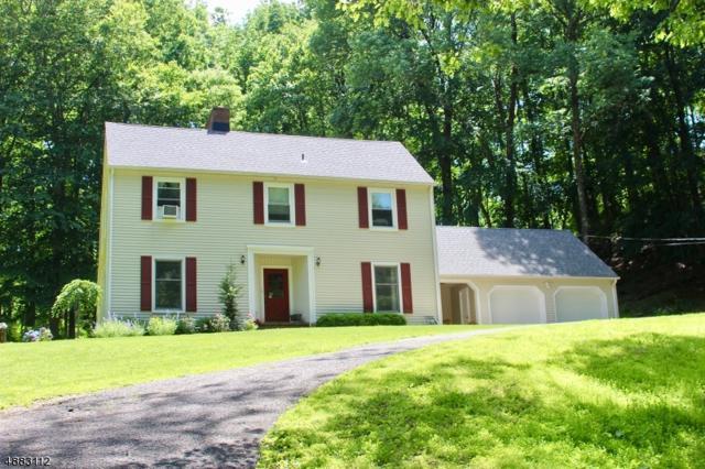 437 Church Rd, Holland Twp., NJ 08848 (MLS #3571314) :: SR Real Estate Group