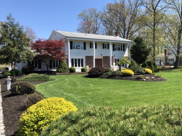 161 Bee Meadow Pky, Hanover Twp., NJ 07981 (MLS #3571684) :: The Debbie Woerner Team
