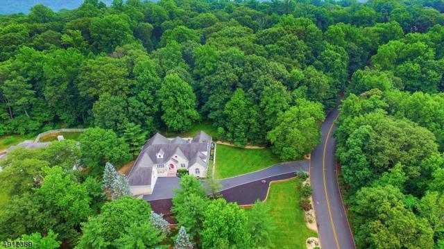 10 Deer Path, Warren Twp., NJ 07059 (MLS #3571709) :: Weichert Realtors