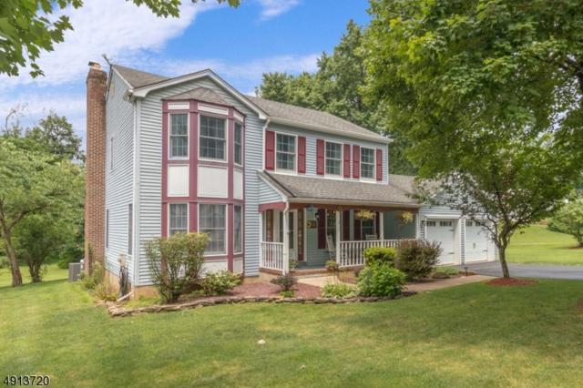 1 Fawn Run, Bloomsbury Boro, NJ 08804 (MLS #3571925) :: SR Real Estate Group