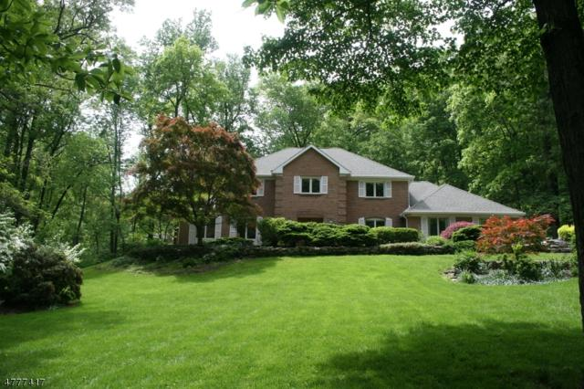12 Rippling Brook Way, Bernardsville Boro, NJ 07924 (MLS #3571984) :: Weichert Realtors