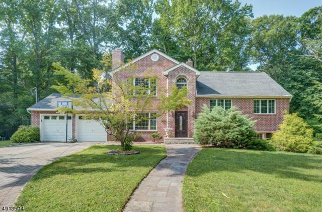 7 Homestead Ct, Millburn Twp., NJ 07078 (MLS #3572129) :: The Sue Adler Team