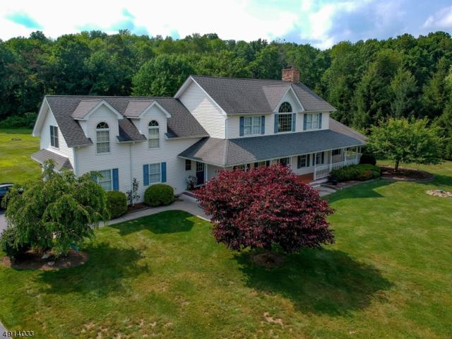 19 Roberts Way, Wantage Twp., NJ 07461 (#3572183) :: Daunno Realty Services, LLC