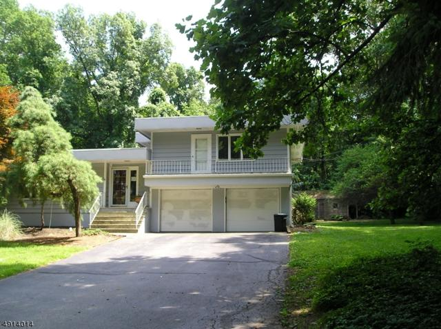 25 Cherry Tree Ln, Chester Boro, NJ 07930 (#3572200) :: Daunno Realty Services, LLC