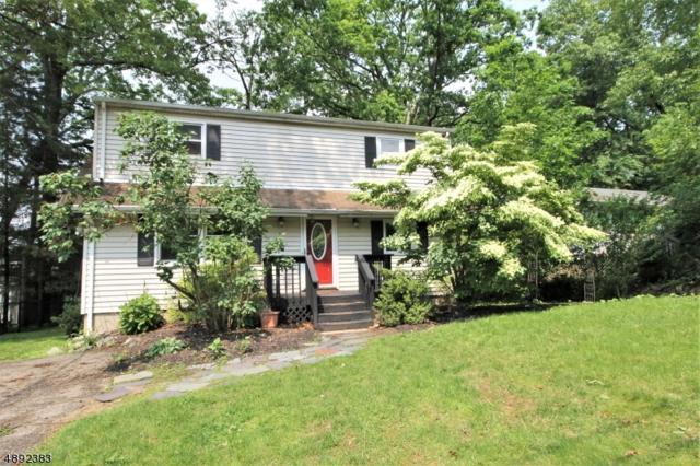 24 Woods Edge Rd, Byram Twp., NJ 07874 (#3572292) :: Group BK