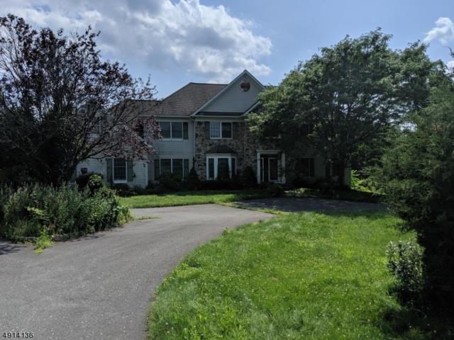 16 Kelsey Farm Rd, Alexandria Twp., NJ 08848 (MLS #3572297) :: The Dekanski Home Selling Team
